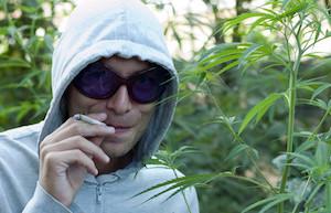 Как распознать наркомана употребляющего травку