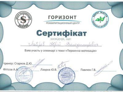 Сертификат Лавров Юрий